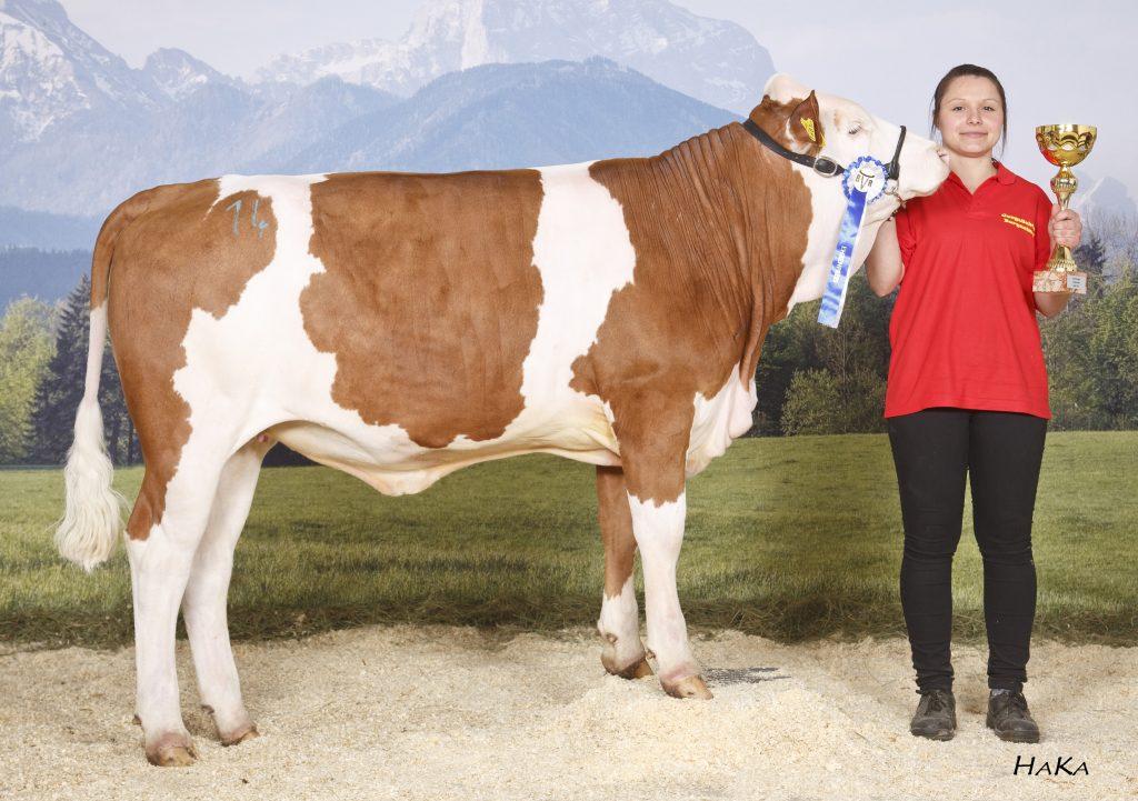Gesamtsieger JZC, Wildhager Helene